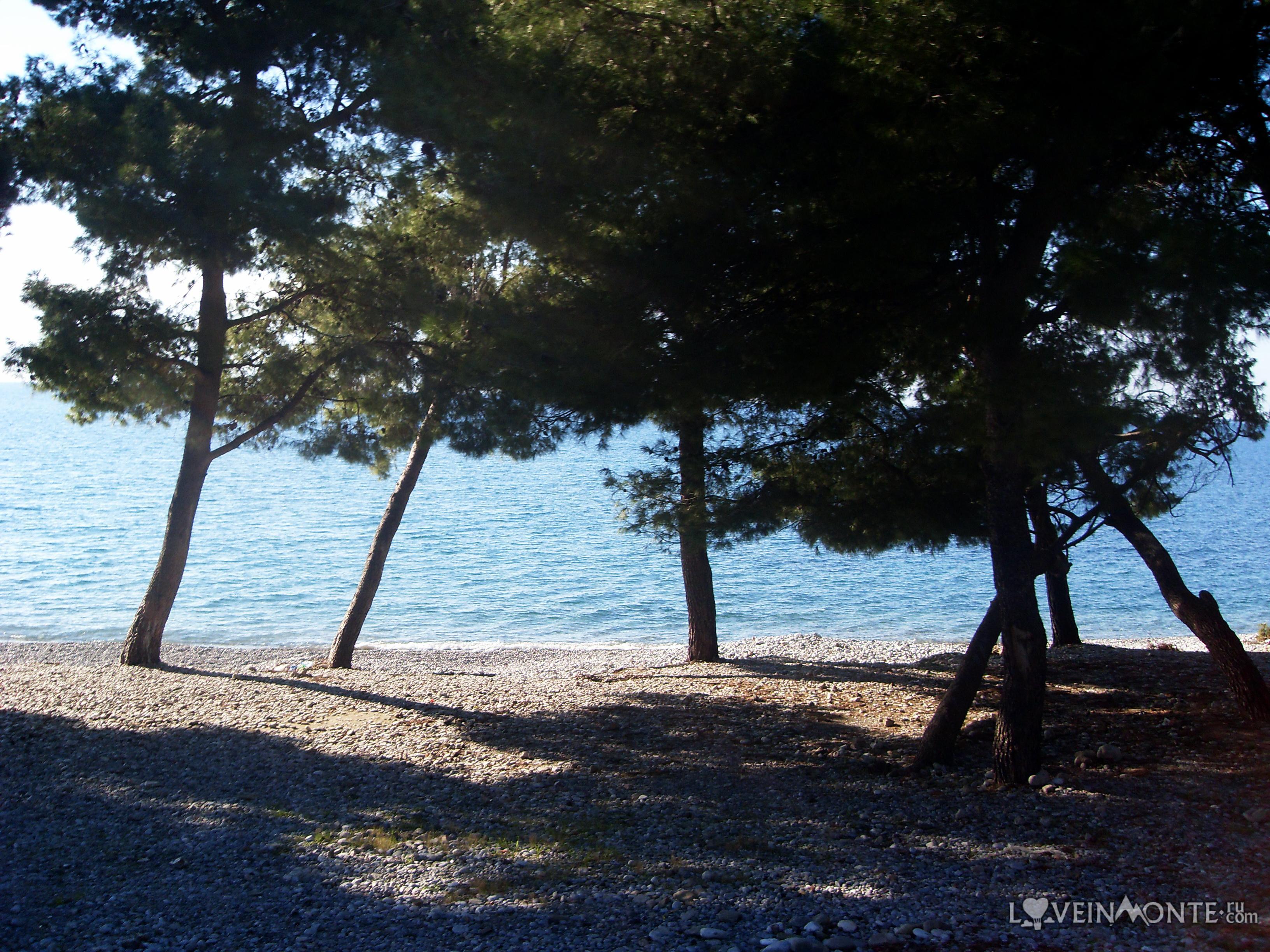 Море в Черногории