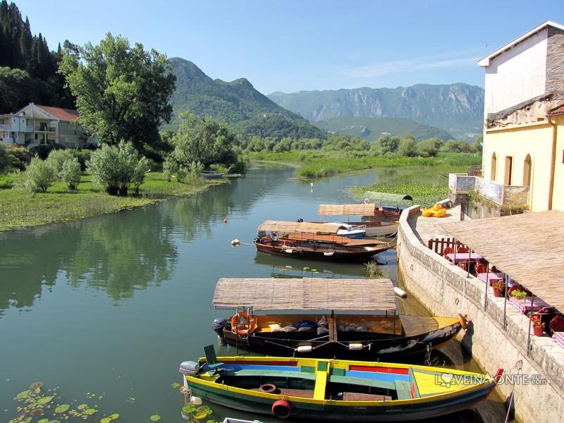 Вирпазар Скадарское озеро
