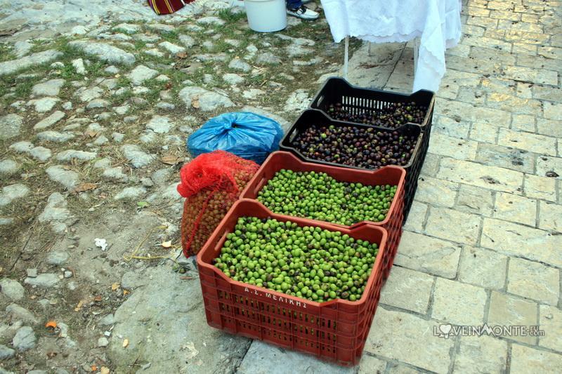 Маслиниада в Старом Баре