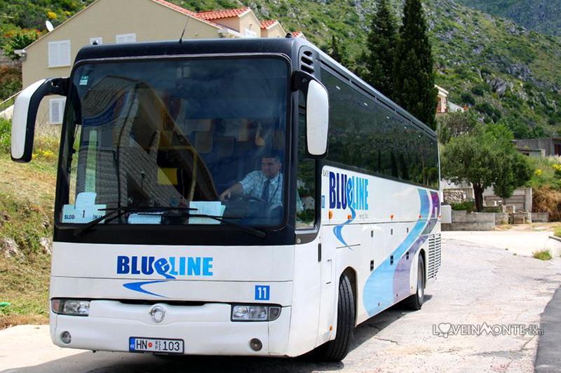 Автобусы в Черногории