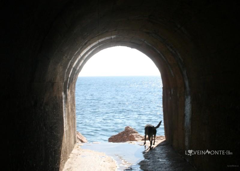 Тунель Дивля Плажа