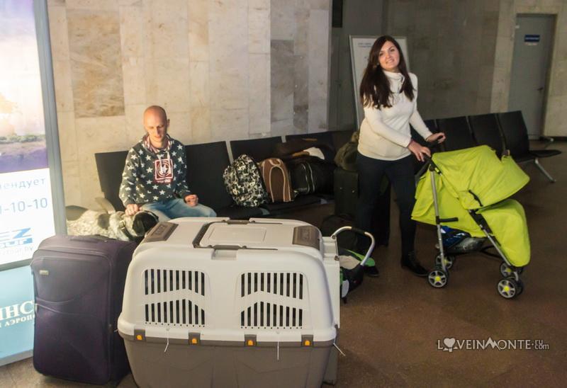 Перелет с собакой и ребенком