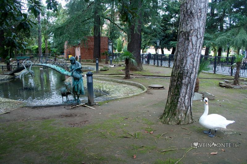 Лебедь в Батуми