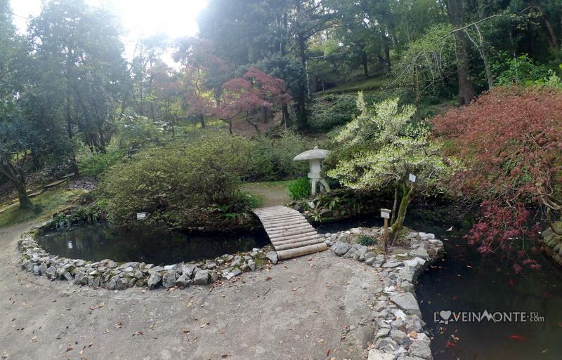 Ботанический сад в Батуми весной