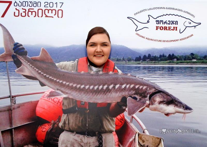 Фестиваль морепродуктов в батуми