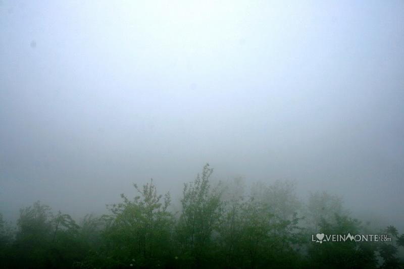 Канатная дорога Арго в дождь