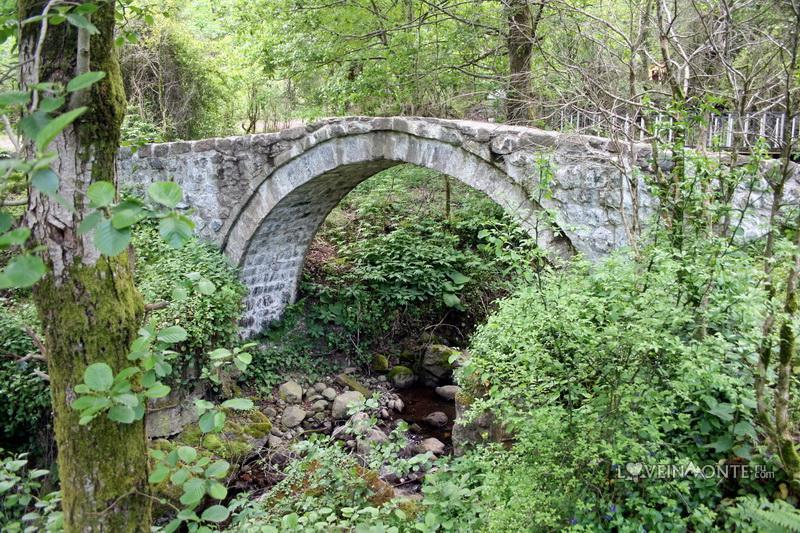 Арочный мост в Мирвети