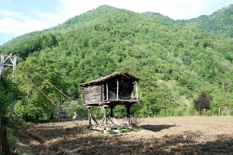 Село Мирвети, Аджария