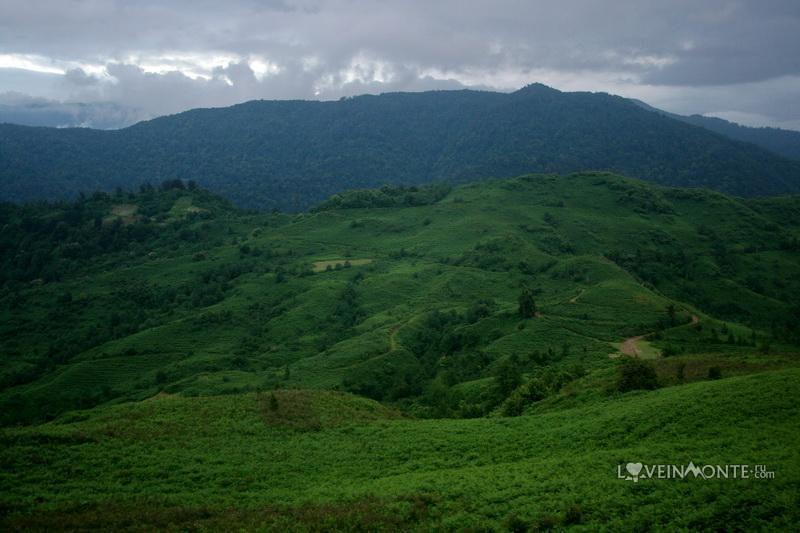 Гора над Гонио Грузия