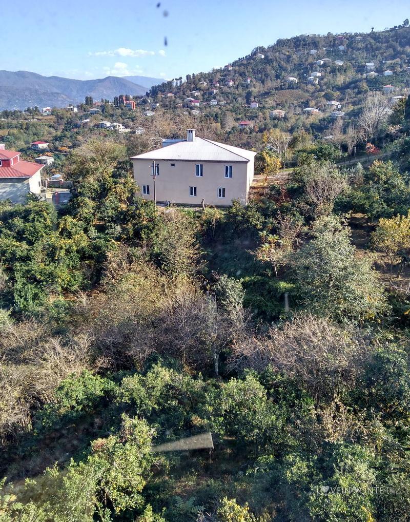 Сад в Ахалисопели