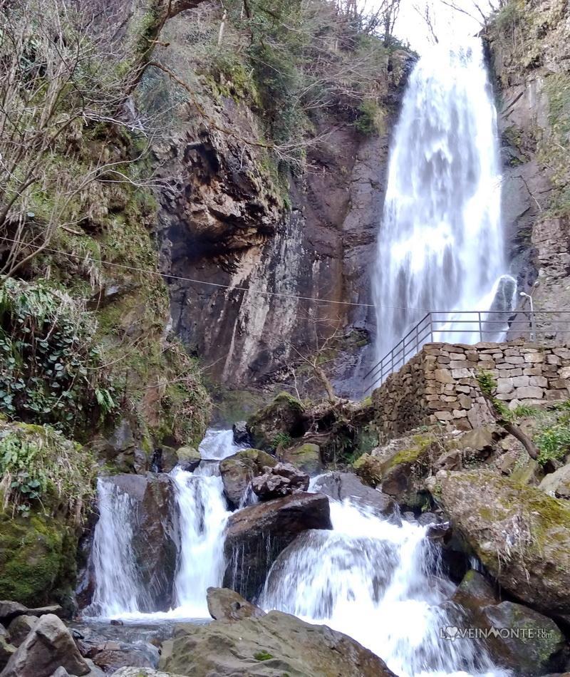 Махунцети, Грузия