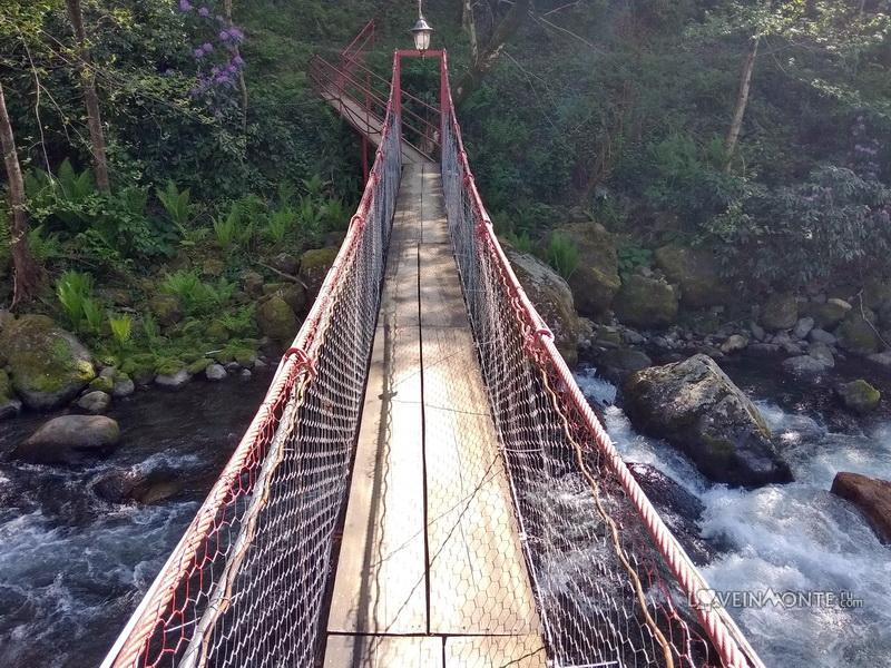 Подвесной мост в Грузии
